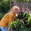 Anwardah profile image