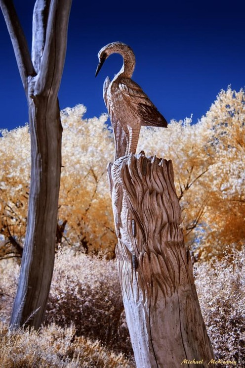 This chainsaw sculpture by Albuquerque native Mark Chavez is on permanent display at the Pueblo Pueblo Montano Chainsaw Sculpture Garden (it was carved right there from a cottonwood tree trunk).