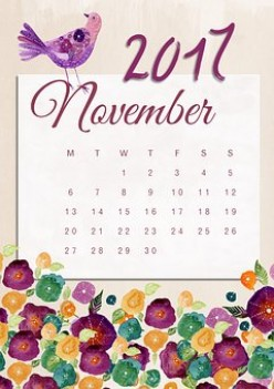 My Goals for November 2017