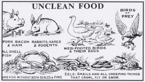Food The Bible Considered Is Unclean In What but with