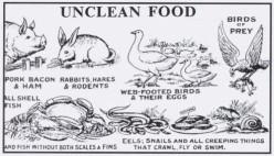 Biblical Junk Foods!