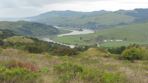 Bodega Bay: I took this picture while on the Red Trail.