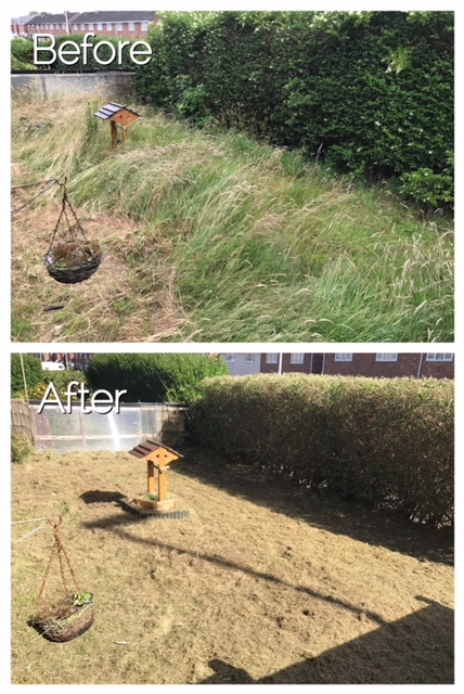 An example of the work we do transforming overgrown areas