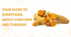 Your Guide to Everything About Curcumin and Turmeric