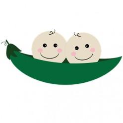 Vegetable Idioms