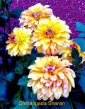 Fabulous, Fragrant, Flowers, February: a Poem on Flowers