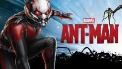 Ant-Rhymes