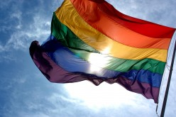 Gay and Lesbian Activism of the 1960s and 1970s