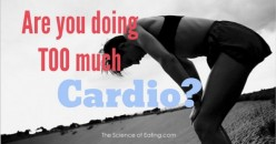Cardiovascular Training:Can you do too much Cardio?