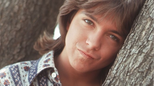 David Cassidy is a talented musician, however, he was best known for the character role as Keith Partridge in the sitcom, The Partridge Family.