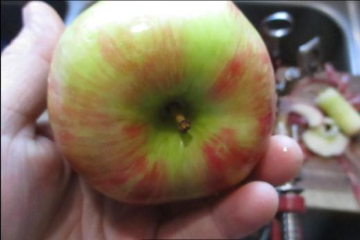 next apple