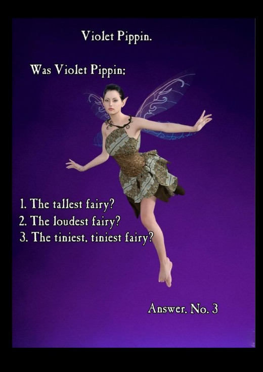 Violet Pippin Fairy book  Just one of the original I tried out before adding other pics and text.  Copyright Nell Rose