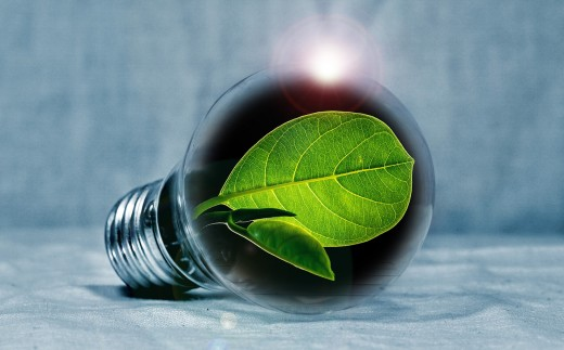 A neon bulb is equivalent to 8 energy saving bulbs! Food for thought...