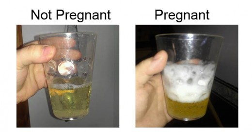 Results of a Bleach homemade pregnancy test