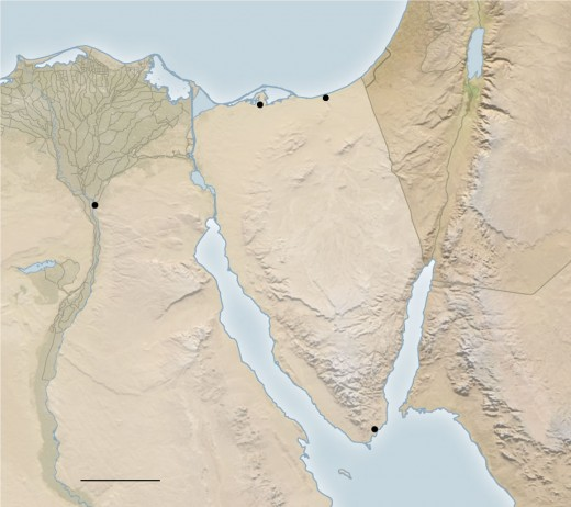 This is the map of the Sinai peninsula, the attack of this Mosque took place at Bir al-Abd, which is in the northern part near the Mediterranean Sea