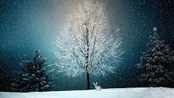 Great Books to Read for Holiday and Winter Seasons for Enjoyment and Relaxation
