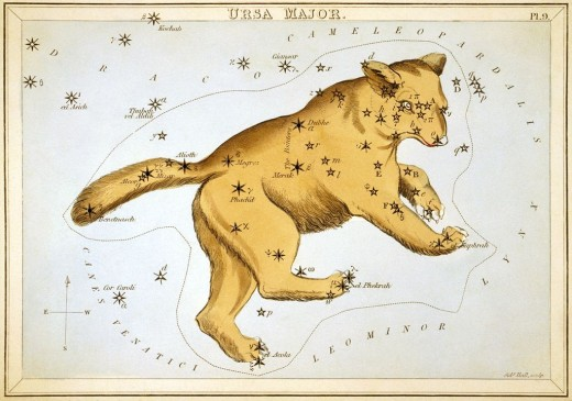 The bear can be seen in the night sky in the Ursa Major and Minor constellations.