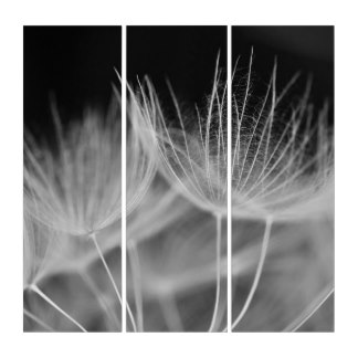 Beautiful and simplistic print of a dandelion inspiring one to make a wish.  Design your own black and white art at Zazzle!