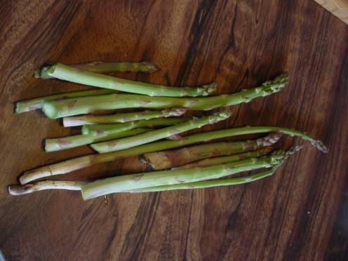 Wild Harvested Asparagus