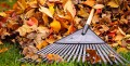 Tips to Stay Safe and Healthy This Fall Season