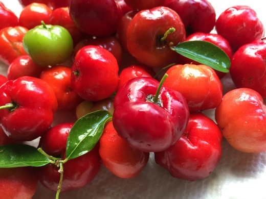 Dark red cherries are sweeter.