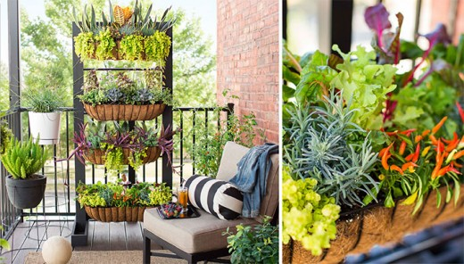 Don't you just love this vertical garden?  How helpful will this be to that senior gardener you know who has trouble kneeling