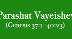 Parashat Vayeishev