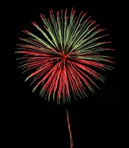 Fireworks often scare dogs and cats!