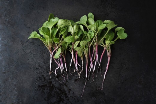 Dark, leafy greens offer a natural dietary source of vitamin B.