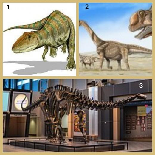 1. Camarasaurus dinosaurs    2. Carcharodontosaurus Dinosaur 3. Brontosaurus Skeleton (Tellus Science Museum)