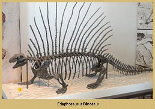Edaphosaurus lived around 300 million years ago, the first remains being found in North America.