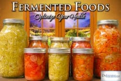 Microbial Ecology of Fermented Foods and Beverages