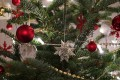 Origin and Tradition of the American Christmas Tree