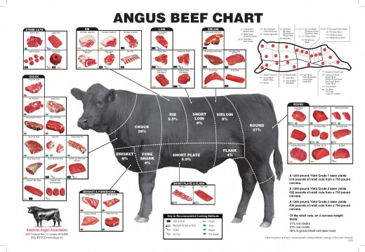 Beef Butcher Shop Chart