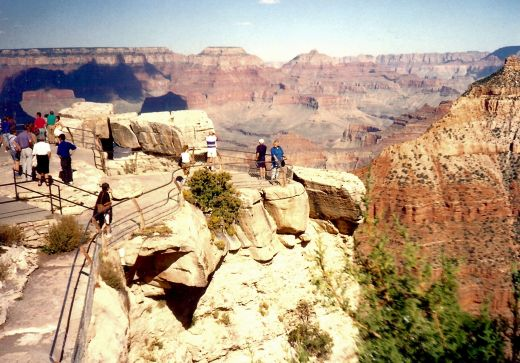 People standing at one of the Grand Canyon overlooks