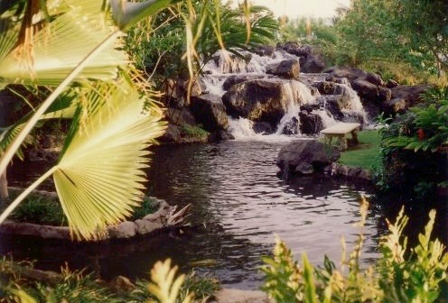 Waterfalls and lush foliage at the Ritz-Carlton Mauna Lani Hotel in Hawaii