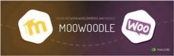 Is MooWoodle Really a Moodle WordPress Integration Bridge?