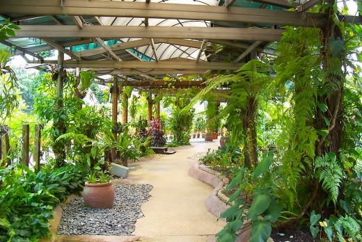 Beautifully designed garden.