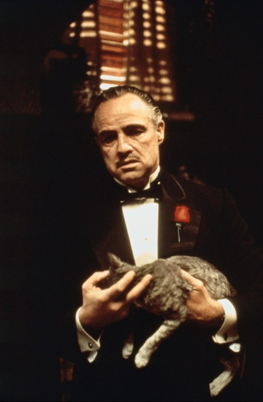 "Brando and friend. ""The Godfather."""