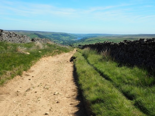Trackway from Summerstone Lodge to Lofthouse
