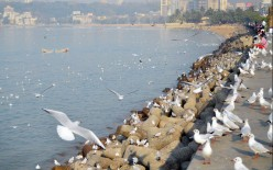 Best Places to Visit in Mumbai City