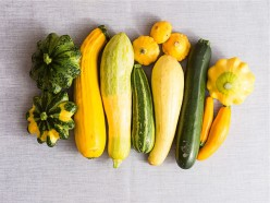 Growing Summer Squash All Summer Long