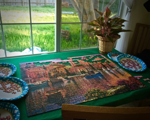 A window view overlooking a garden while assembling a puzzle is absolutely restful.