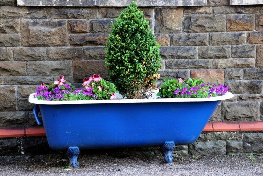 Use your creativity and imagination for indoor or outdoor containers.