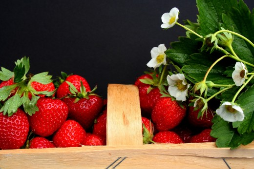 A basket of freshly harvested strawberries with their white flowers.