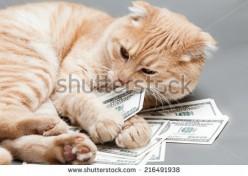 Money Changes Friendships