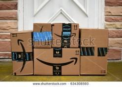 Fake Book Reviews on Amazon Stores