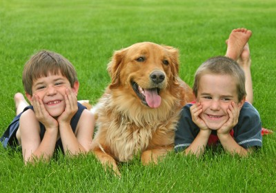 Some dogs are better with children than others!