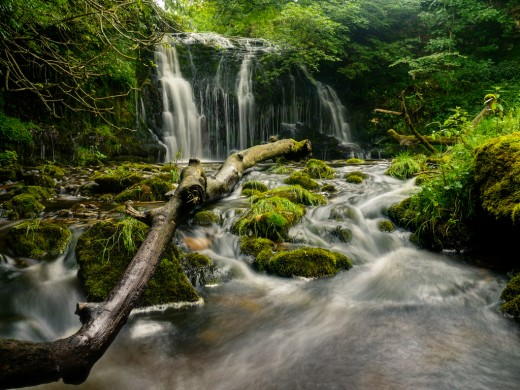 Cray Gill Falls, a tributary of the infant River Wharfe close by the river in Langstrothdale