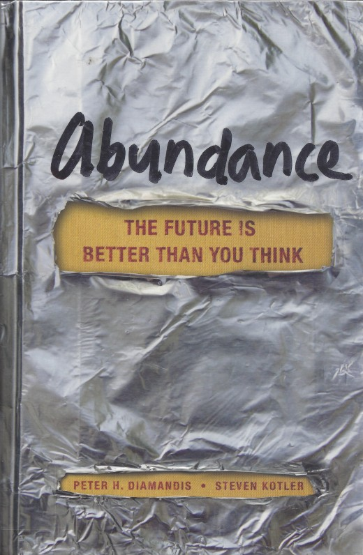 The Cover for the Book Abundance